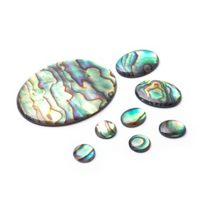 Natural Paua Shell Cabochons