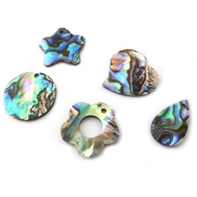 Assorted 10 Pack Of Paua Shell Charms