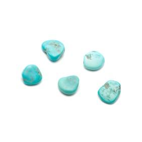 Sleep Beauty Turquoise Tumbled Polished Stones (Undrilled)