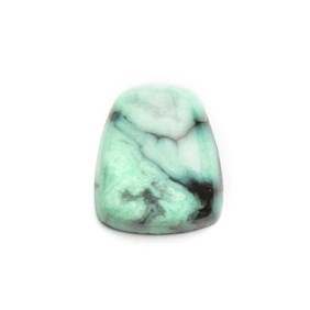 New Lander Turquoise Cabochon