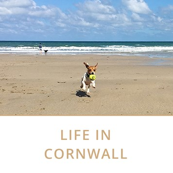 cornwall blog