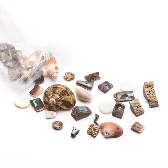 shell and gemstone bead pack