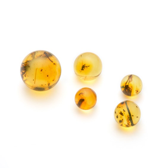 Insect Included Natural Copal Amber Spheres (Undrilled)