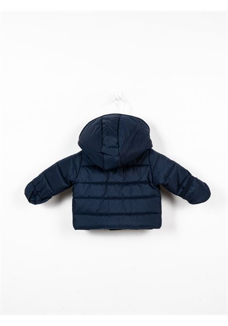 TOMMY HILFIGER | jacket | TOM35BLU