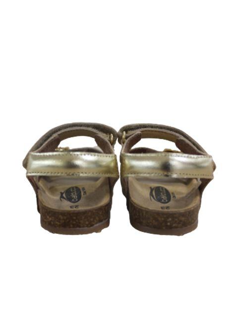 BALDUCCI | sandals  | B7601ORO