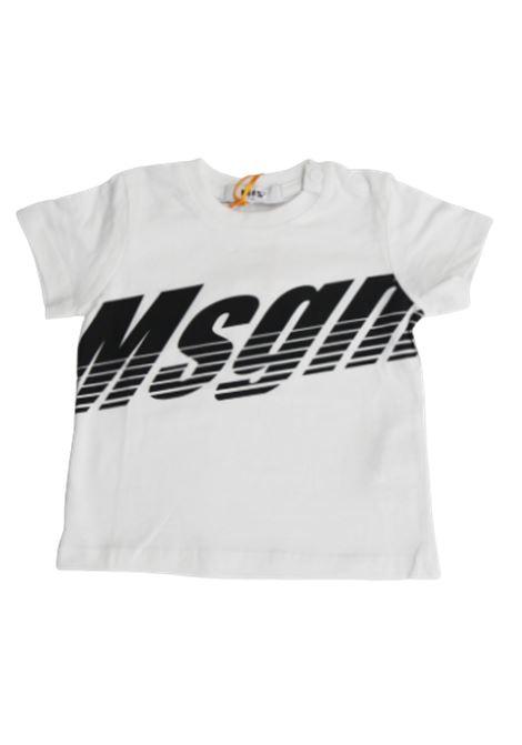 T-shirt MSGM MSGM | T-shirt | 024002BIANCO