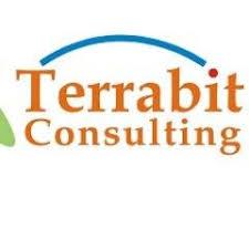 Terrabit Consulting Sdn Bhd