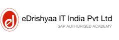 eDrishyaa IT India Pvt. Ltd.