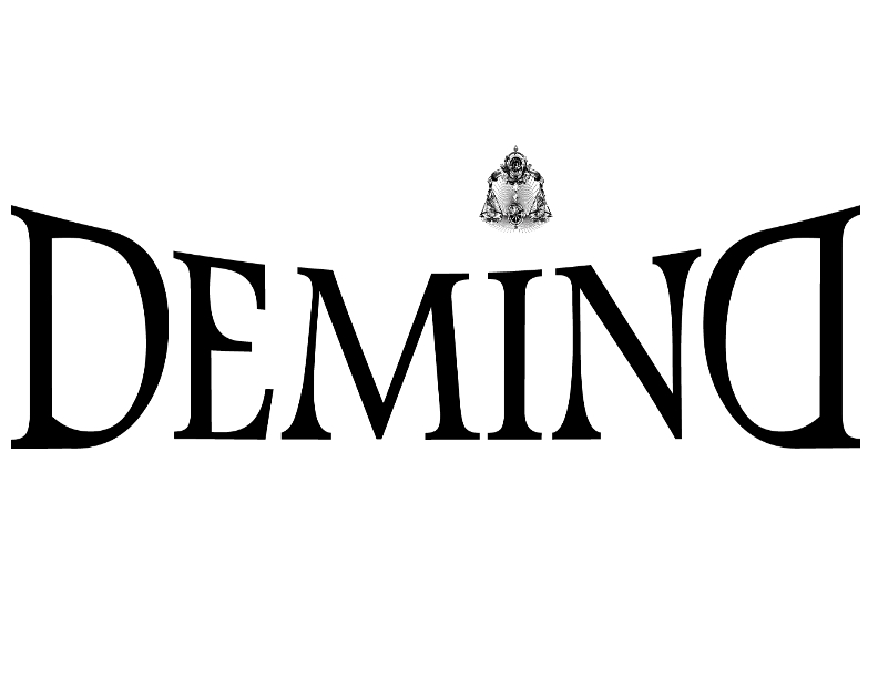 DEMIND FIRMA MANAGEMENT L.L.C
