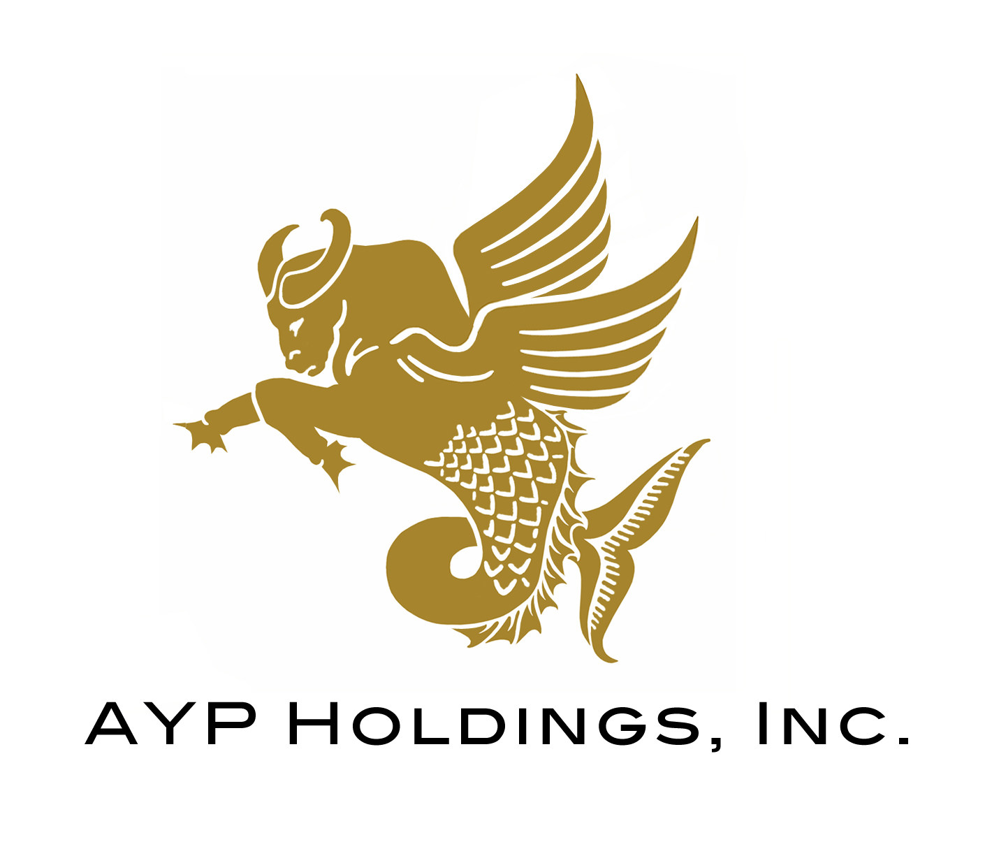 AYP Holdings Inc.