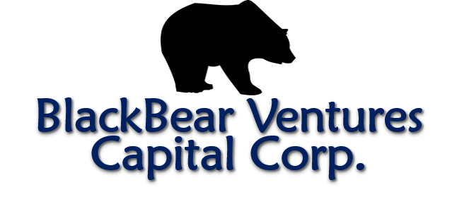 BlackBear Ventures Capital Corp.