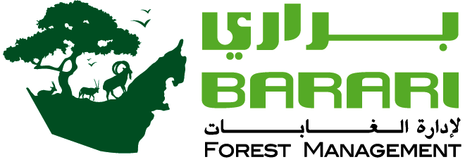 Barari Forest Management