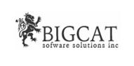 Bigcat Software Solutions, Inc.