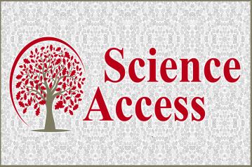 Sci Access Inc