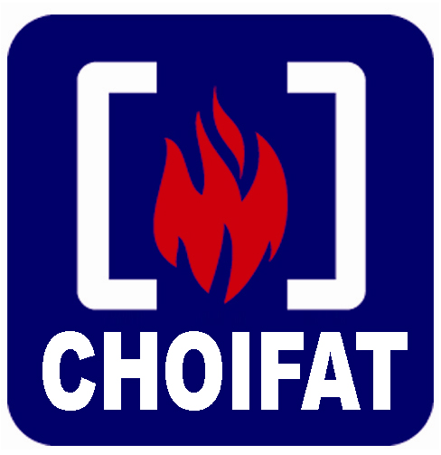 CHOIFAT SAFETY & SECURITY LLC