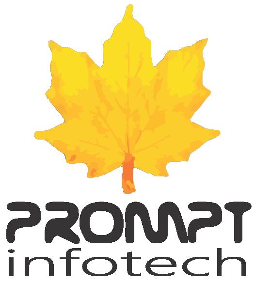 Prompt Infotech