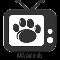 AAA - Animals