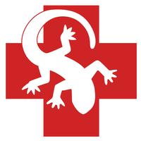 Amphibious Medics