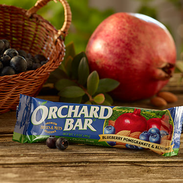 Blueberry-Pomegranate Almond Orchard Bar