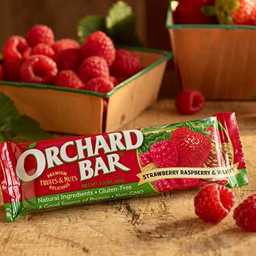 Strawberry-Raspberry Walnut Bars