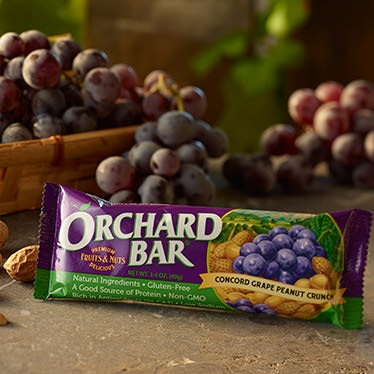 Concord Grape Peanut Crunch Orchard Bar
