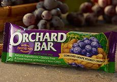 Concord Grape Peanut Crunch Orchard Bar