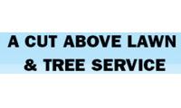 A Cut Above Lawn Service