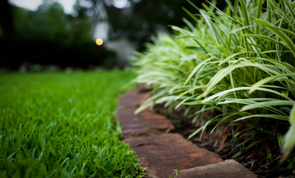 Lawn Pros Plus Inc  Coupon | Brevard | Lawn & Garden | Home