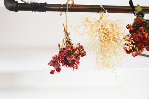 Height 320 108 2f2015 02 05 120123 dried flowers