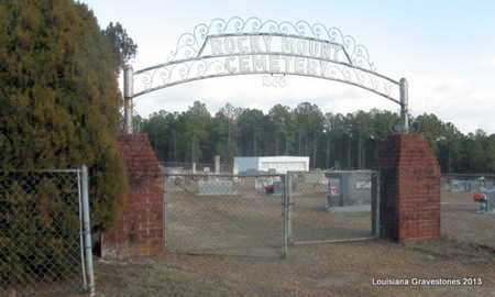 *ENTRANCE,  - Bienville County, Louisiana |  *ENTRANCE - Louisiana Gravestone Photos