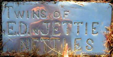NETTLES, TWINS - Bienville County, Louisiana | TWINS NETTLES - Louisiana Gravestone Photos