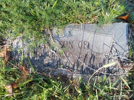 BARNETT, INFANT SON - Bossier County, Louisiana | INFANT SON BARNETT - Louisiana Gravestone Photos