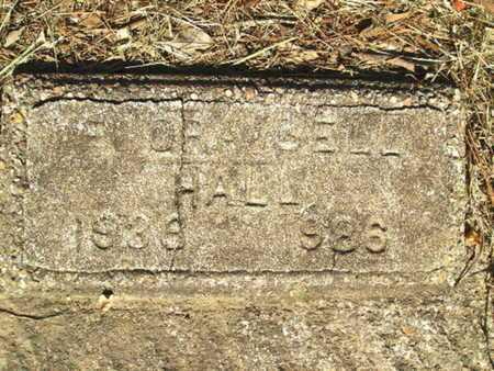 HALL, FLORA BELL - Bossier County, Louisiana | FLORA BELL HALL - Louisiana Gravestone Photos
