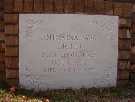PAPA GIGLIO, ANTONIA - Caddo County, Louisiana | ANTONIA PAPA GIGLIO - Louisiana Gravestone Photos