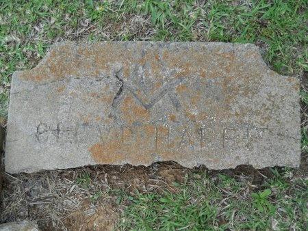 HARRIS, CLEVE - Caddo County, Louisiana | CLEVE HARRIS - Louisiana Gravestone Photos