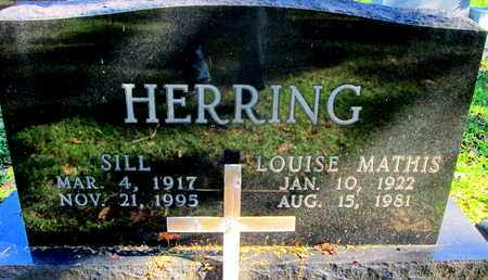 HERRING, LOUISE - Caddo County, Louisiana | LOUISE HERRING - Louisiana Gravestone Photos