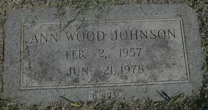 JOHNSON, ANN - Caddo County, Louisiana | ANN JOHNSON - Louisiana Gravestone Photos