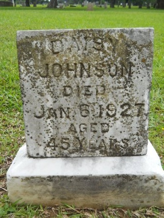 JOHNSON, DAISY - Caddo County, Louisiana   DAISY JOHNSON - Louisiana Gravestone Photos