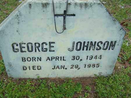 JOHNSON, GEORGE - Caddo County, Louisiana   GEORGE JOHNSON - Louisiana Gravestone Photos