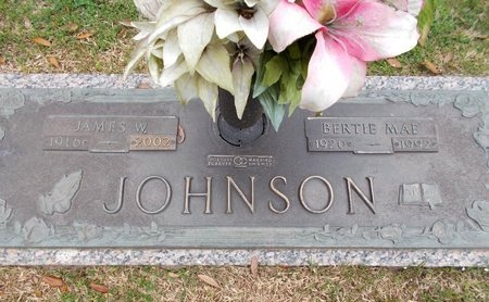 JOHNSON, JAMES W - Caddo County, Louisiana | JAMES W JOHNSON - Louisiana Gravestone Photos