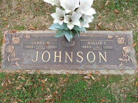JOHNSON, JAMES M - Caddo County, Louisiana | JAMES M JOHNSON - Louisiana Gravestone Photos