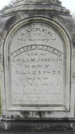 JOHNSON, MERCER WRIGHT - Caddo County, Louisiana   MERCER WRIGHT JOHNSON - Louisiana Gravestone Photos