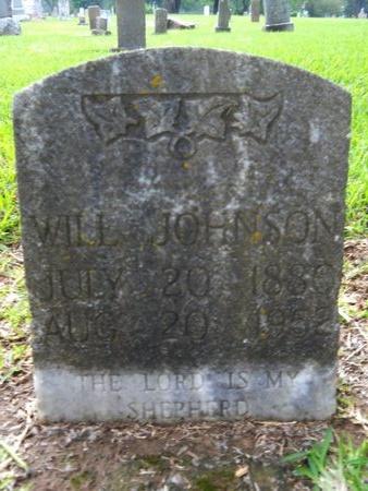 JOHNSON, WILL - Caddo County, Louisiana | WILL JOHNSON - Louisiana Gravestone Photos