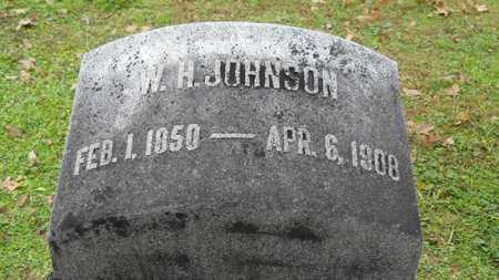 JOHNSON, W H - Caddo County, Louisiana | W H JOHNSON - Louisiana Gravestone Photos