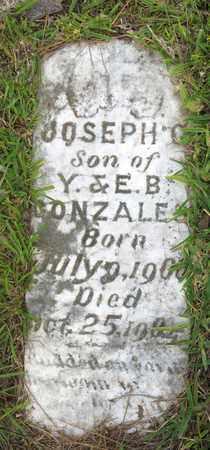 GONZALES, JOSEPH G - Calcasieu County, Louisiana | JOSEPH G GONZALES - Louisiana Gravestone Photos