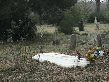 *  OVER VIEW, . - De Soto County, Louisiana   . *  OVER VIEW - Louisiana Gravestone Photos