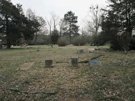 * OVERVIEW 2, . - De Soto County, Louisiana   . * OVERVIEW 2 - Louisiana Gravestone Photos