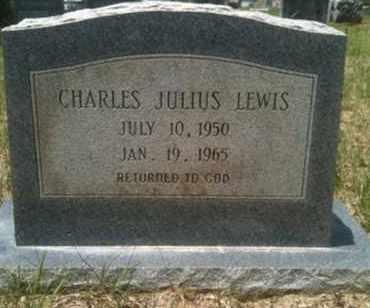 LEWIS, CHARLES JULIUS - De Soto County, Louisiana | CHARLES JULIUS LEWIS - Louisiana Gravestone Photos