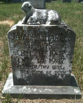 LEWIS, JAMES CHARLES - De Soto County, Louisiana | JAMES CHARLES LEWIS - Louisiana Gravestone Photos
