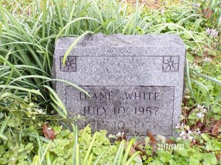 WHITE, DIANE - East Carroll County, Louisiana | DIANE WHITE - Louisiana Gravestone Photos